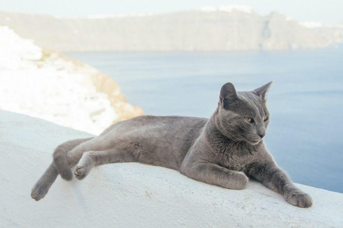 Lifestyle photography. Santorini, Greece